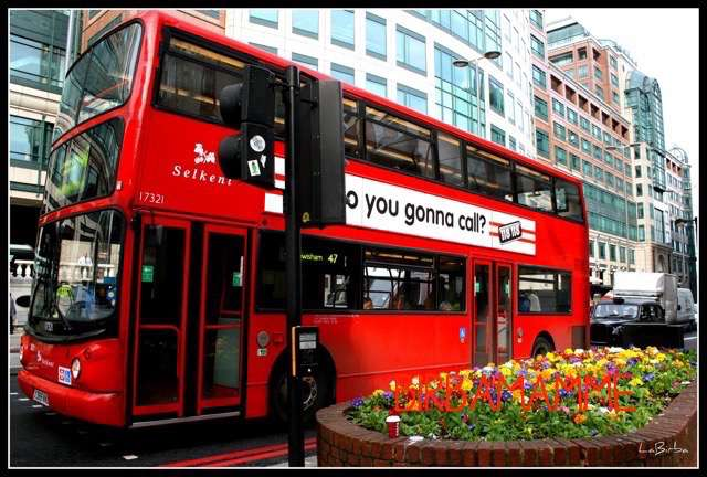 London Bus birbaMamme